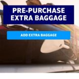 SAS スカンジナビア航空の無料荷物に個数 超過・追加荷物の事前登録方法!